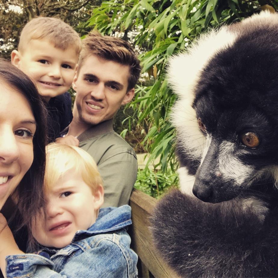 Lemur selfie, zoo fun, group shot, Woburn Safari Park