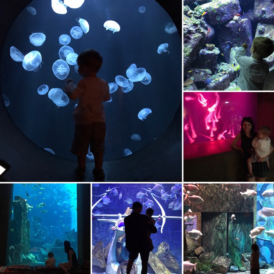 Atlantis the Palm, Dubai, holiday with toddler, Dubai review, Atlantis review, Dubai for children, luxury family holiday, Atlantis